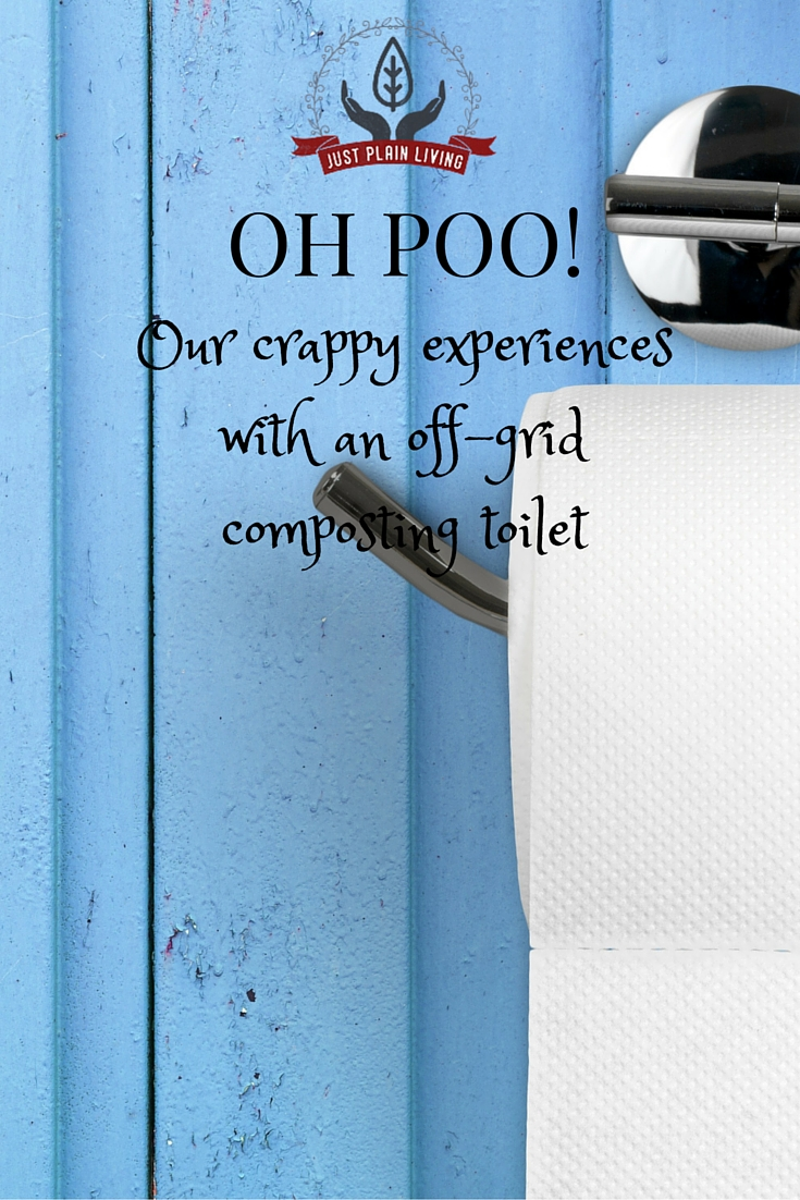 If you are thinking of buying a composting toilet, read this first!