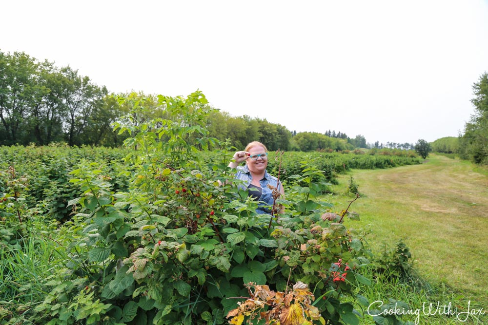 Cooking with Jax: Alberta Open Farm Days: Parkland County