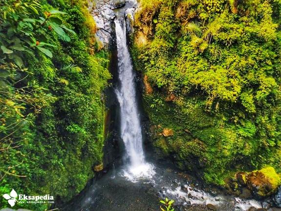 Air Terjun Desa Wonolelo