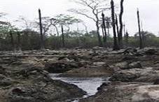 Crude Oil Spillage In Ogoniland