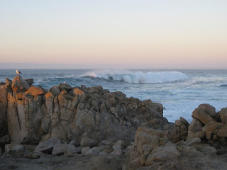 Sky turns pink as dusk approaches along the rocky coast, Pacific Grove, California