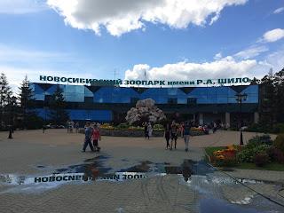 zoológico russia novosibirsk