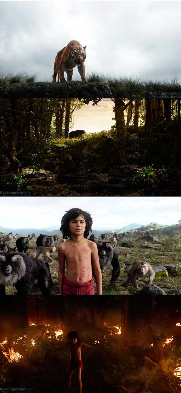 El Libro de la Selva HD 1080p