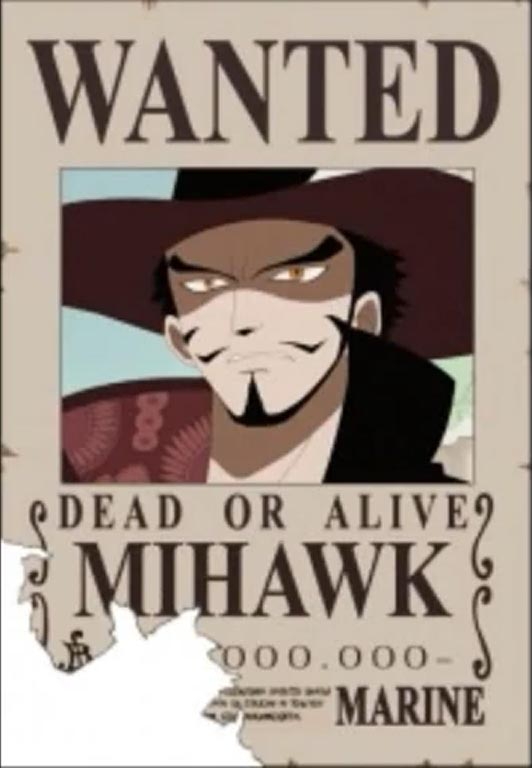 Free Famous Cartoon Pictures One Piece Shichibukai