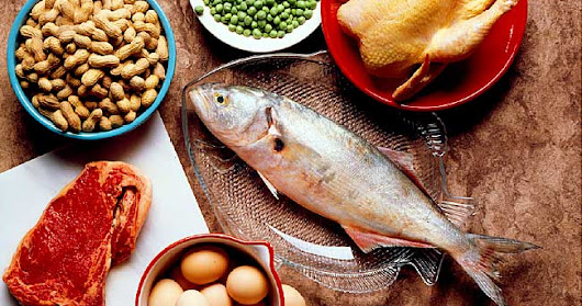 Are High-Protein Diets Unhealthy?