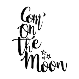 Com' on the Moon