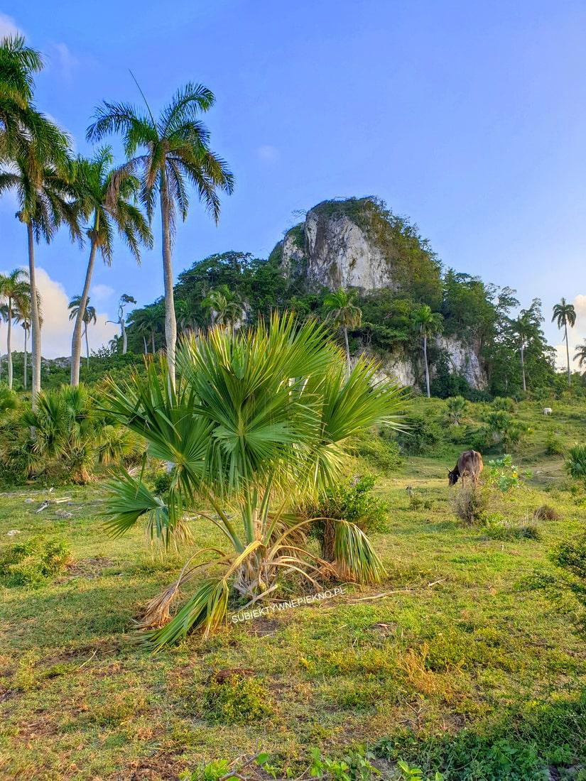 Puerto Plata Dominikana opinie, krajobrazy, góry