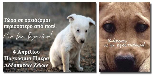 4 Απριλίου-Παγκόσμια Ημέρα Αδέσποτων Ζώων