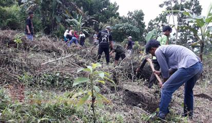 Relawan Laskar Hijau melakukan penanaman 500 pohon