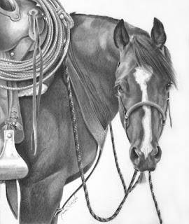 caballo vaquero a lapiz
