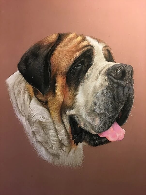08-Saint-Bernard-Virginie-Agniel-Pastel-Drawings-of-Cats-and-Dogs-www-designstack-co