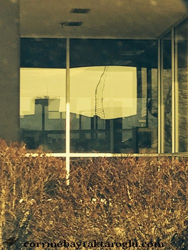 abstract photograph of car dealership window