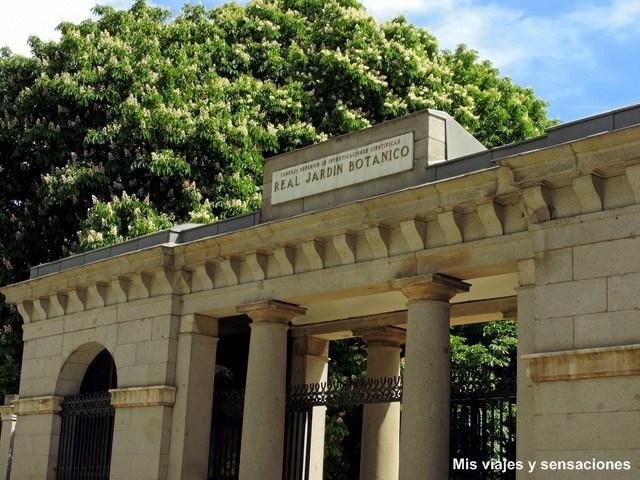 Puerta de Murillo, Real Jardín Botánico de Madrid