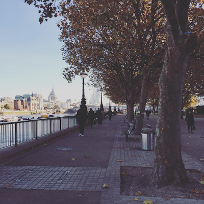 Autumn on South bank