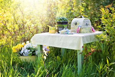 ΣΤΗ ΚΗΠΟΥΡΙΚΗ Μπορεί να χρησιμοποιηθεί στην κηπουρική για την καταπολέμηση της ψώρας.