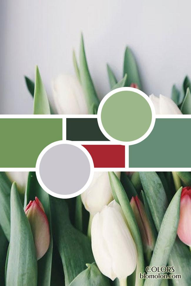 moodboard variedad de color 6