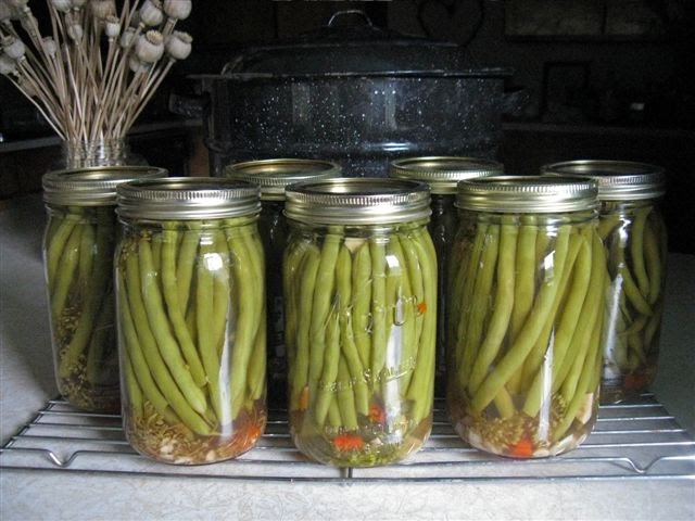 Two Men and a Little Farm DILLY BEANS RECIPE