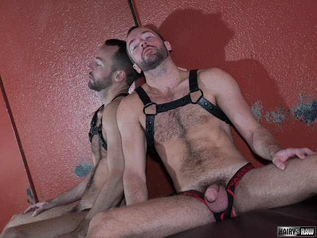 Breed me Raw - Alex Hawk and Dino DeFrancesco
