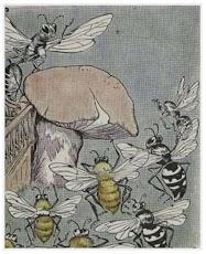 Dongeng Lebah dan Tawon yang Berebut Sarang Madu (Aesop) | DONGENG ANAK DUNIA
