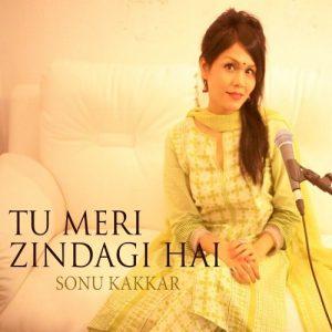 Tu Meri Zindagi Hai – Cover (2016)