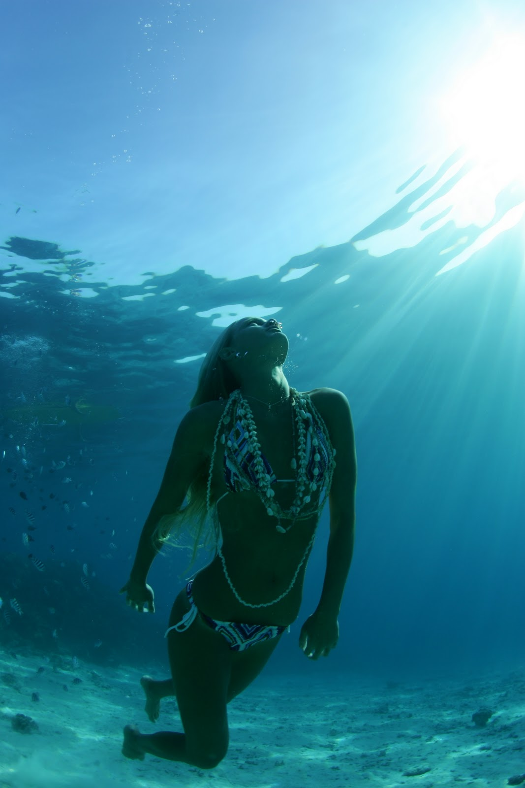 Woman Suspended Underwater High-Res Stock Photo - Getty Images