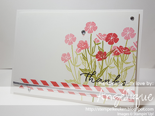 http://stempelkeuken.blogspot.com Wild About Flowers, Watermelon Wonder, Old Olive, 1/8 Silver ribbon, Watercolor Wishes Card Kit, Rhinestone Basic, Whisper White Thick Cardstock