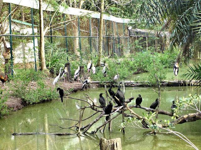 Discover Bac Lieu - A peaceful palce Vietnam Mekong Delta 1