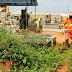 Cemitérios de Mossoró recebem mutirão de limpeza