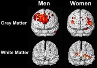 Διαφέρει η νοημοσύνη γυναίκας άνδρα;