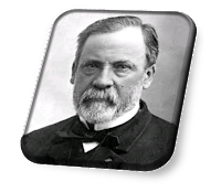 Louis Pasteur AwardHow to Apply for Louis Pasteur Award Life journey and Biography of Louis Pasteur  Education and early life of Louis Pasteur Career of Louis Pasteur Research by Louis Pasteur Immunology and vaccination by Louis Pasteur Anthrax by Louis Pasteur Rabies by Louis Pasteur Awards and honours of Louis Pasteur Legacy of Louis Pasteur Louis Pasteur - Wikipedia  Louis Pasteur - Chemist, Inventor, Scientist - Biography  Louis Pasteur | Science History Institute  Louis Pasteur - History Learning Site  Louis Pasteur - Biography, Facts and Pictures - Famous Scientists  Louis Pasteur Biography | Biography Online  Louis Pasteur: Biography & Quotes - Live Science  louis pasteur facts louis pasteur discoveries louis pasteur inventions louis pasteur education louis pasteur biography louis pasteur contribution louis pasteur achievements louis pasteur experiment