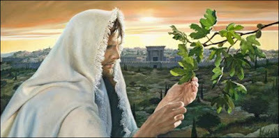 His Second Coming Likened To The Fig Tree