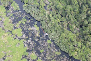 Laporan Dari Heli TNI AU, telah Terjadi Ilegal Logging di Hutan Lindung SM Kerumutan - Commando