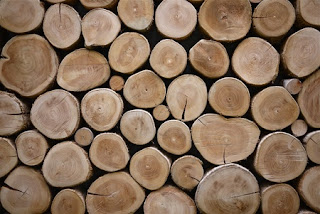 Factors to Consider When Choosing a Wood Species