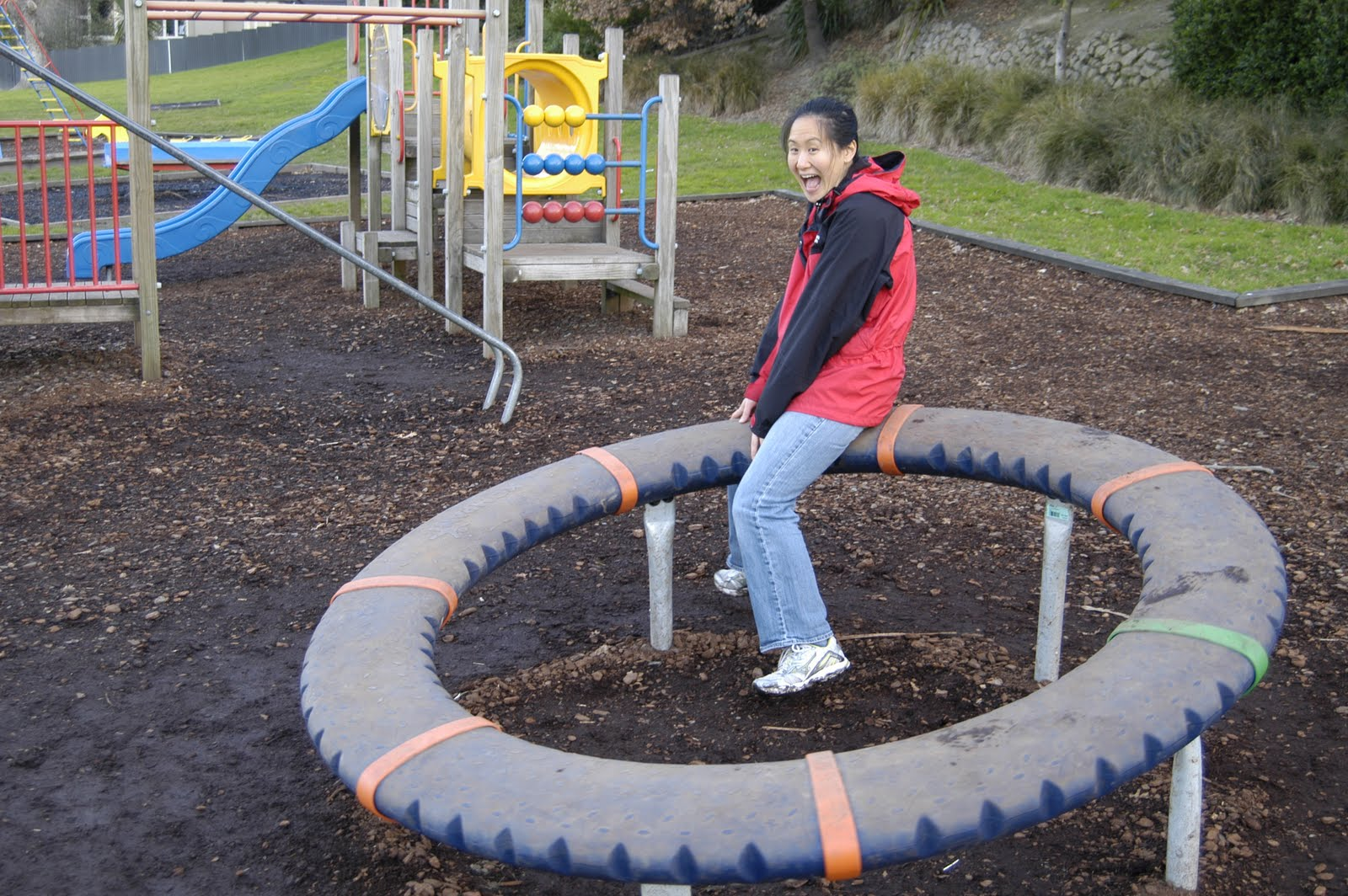 Nonendemics In New Zealand Kiwi Children S Playgrounds