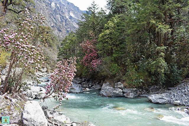Trekking Valle Langtang, Nepal