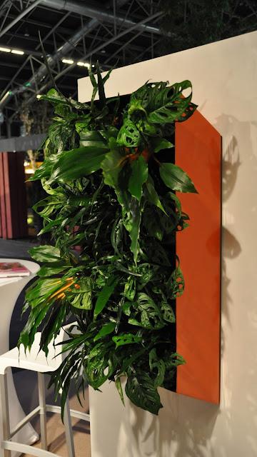 Planten aan de muur of aan het plafond binnen plantenwand voor bedrijven events beurzen kantoor in België Limburg Hasselt Vlaams-Brabant Brussel Antwerpen