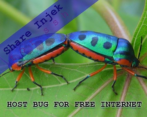 Tips Mencari Bug Wuzz Operator | Share Injek For SSH