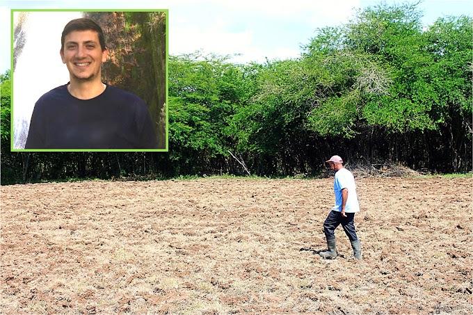 Empresa de Ohio sembrará cientos de tareas de Moringa en Chirino de Monte Plata