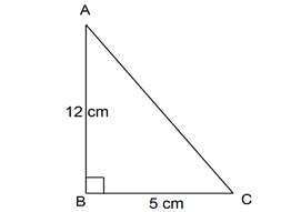 contoh soal luas segitiga dan pembahasan