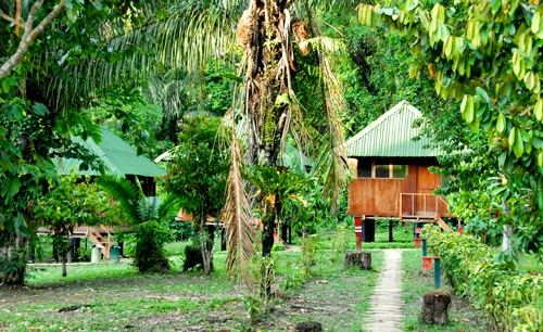 Our Bungalow at Eco Amazonia Lodge amazon jungle peru