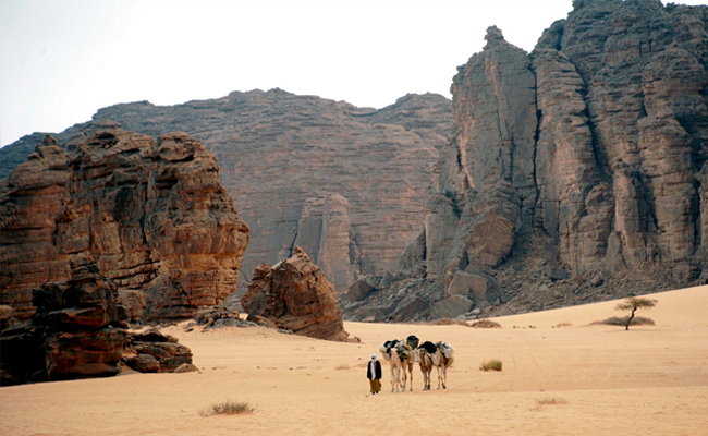 Gurun Aljazair