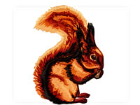 https://www.embroiderydesignsfreedownload.com/2018/04/squirrel-free-machine-embroidery-design.html