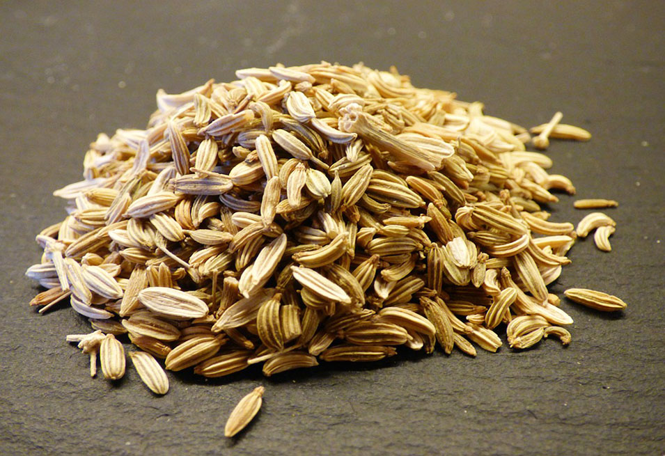 Health Benefits and Remedies of Fennel Seed