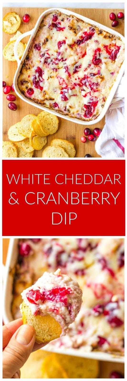 WHITE CHEDDAR AND CRANBERRY DIP