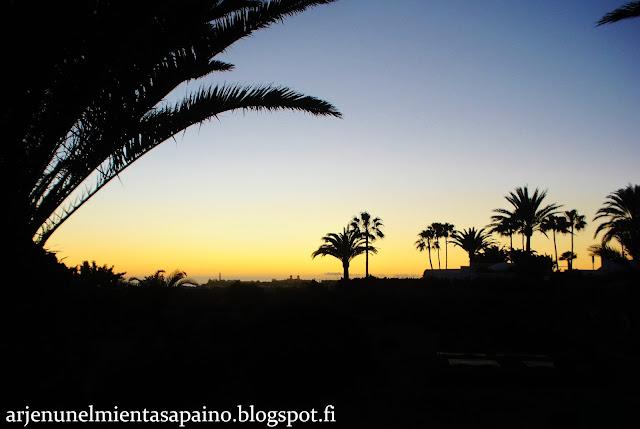 siluetti, maisema, auringonlasku, lomamatka, valokuvaus, perhe