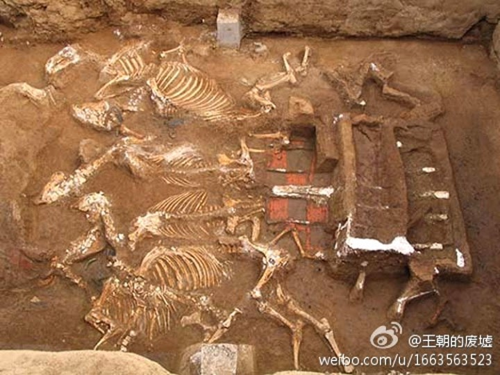 tomb qin shi huangs grandmother has been discovered xi - Encuentran la tumba de la abuela del Primer Emperador de China
