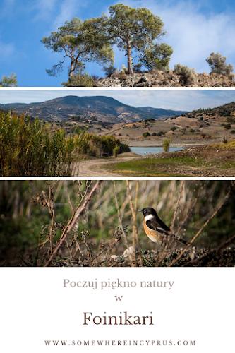 Poczuj piękno natury w Foinikari