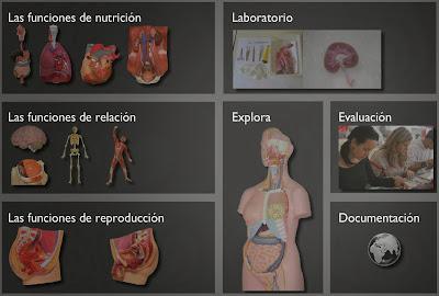 http://ntic.educacion.es/w3/eos/MaterialesEducativos/mem2007/nuestro_cuerpo_clic/interactiva/index.html
