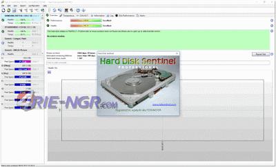 Hard Disk Sentinel Pro 5.01 Build 8557 Final Full
