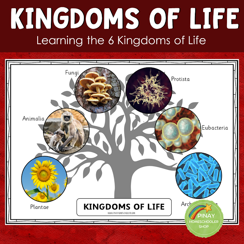 THE SIX KINGDOMS OF LIFE LEARNING PACK MONTESSORI